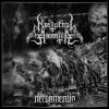 Nocturnal Amentia
