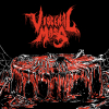 Visceral Mass