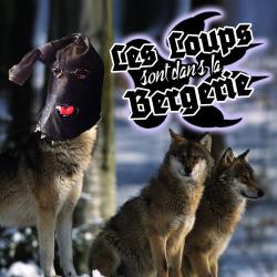 Pourquoi le loup dans le black metal (Les loups sont dans la bergerie)