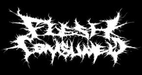 Flesh Consumed