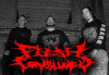 """Flesh Consumed pour l'album """"Fermented Slaughter / Inhuman Butchery"""""""