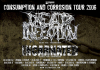 Dead Infection + Incarnated + Brainwash + Sickbag
