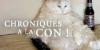 CHRONIQUES A LA CON ! 3